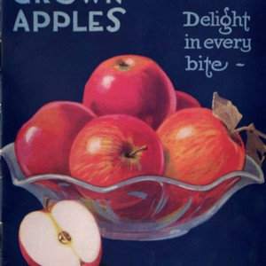 Canadian Grown Apples: Delight in Every Bite